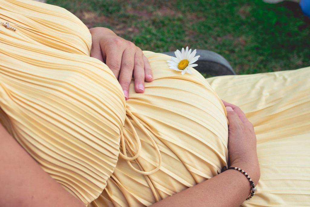 бременна маргаритка
